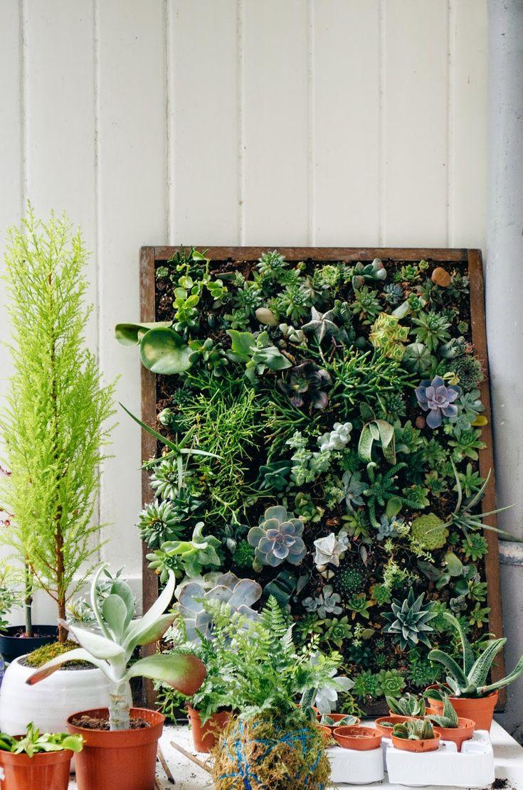 94 besten cultive Bilder auf Pinterest | Gardening, Gärten und Saftig