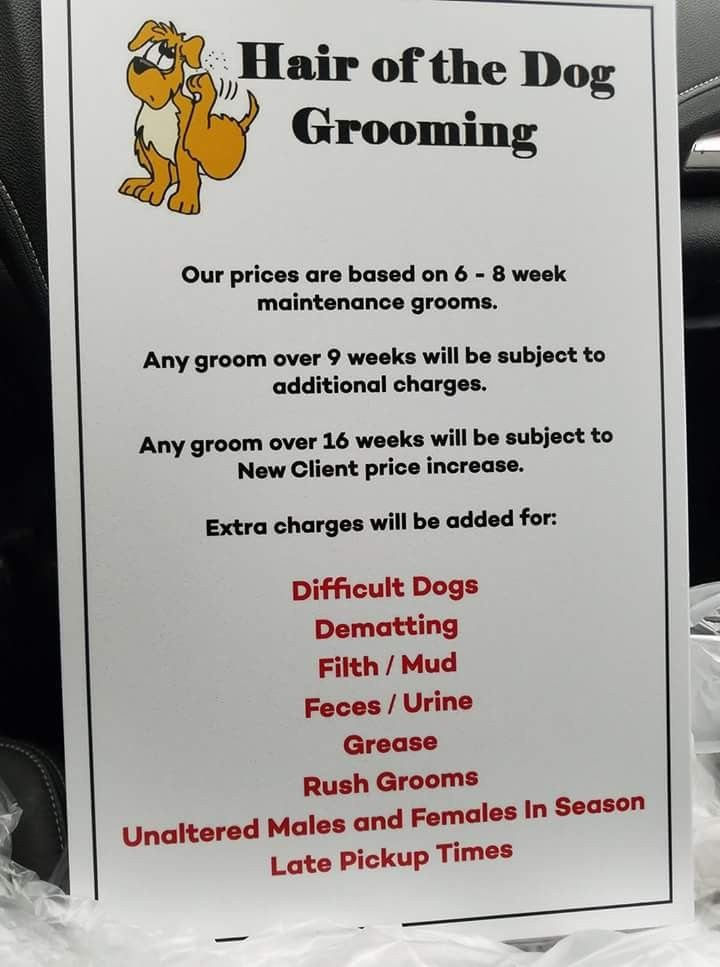 Pin By Lisa Dow On Signs For Grooming Business Dog Grooming Salons Dog Grooming Shop Dog Grooming Business