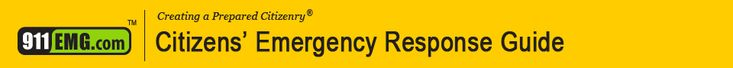banner in page header slot, which reads Citizens' Emergency Response Guide. Good info in this.