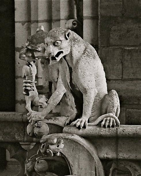 Gargoyle Cats of Paris Notre Dame Cathedral by EclecticForest