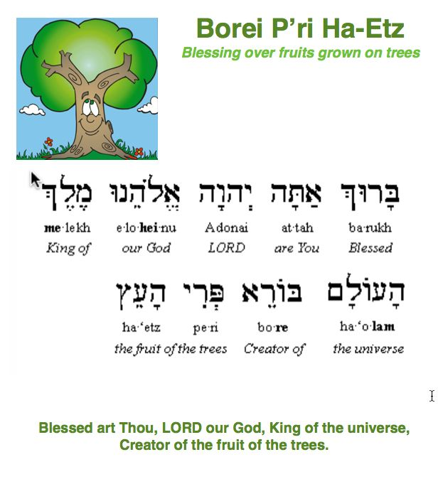 how to say learn in hebrew