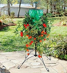 upside down tomato tree with stand