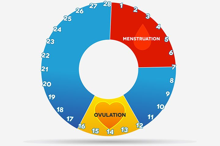 how to tell ovulation by mucus