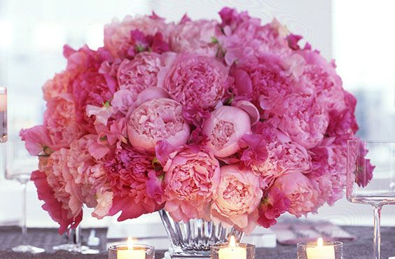You can never have too many peonies.