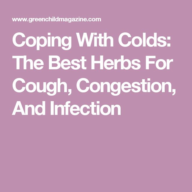 Coping With Colds The Best Herbs For Cough Congestion
