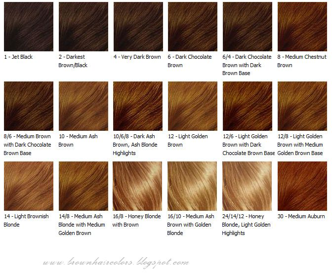 Brown Hair Color Chart Colors Coloring Tips