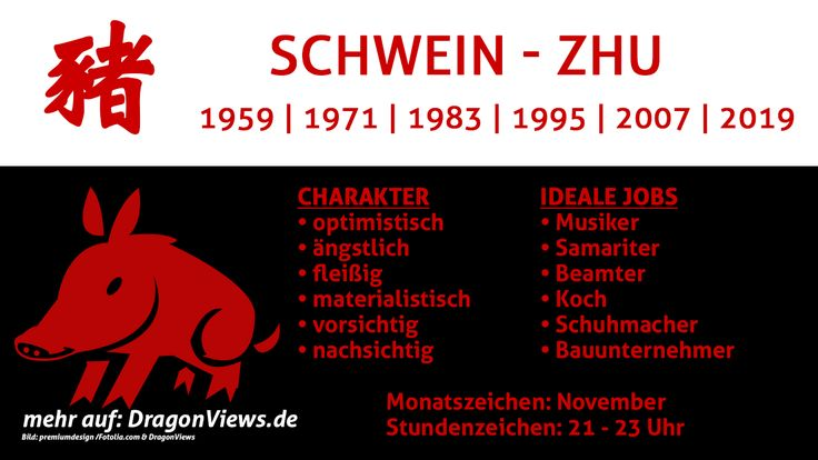 Chinesische Tierkreiszeichen: Schwein - Fakten   © premiumdesign - fotolia.com / DragonViews