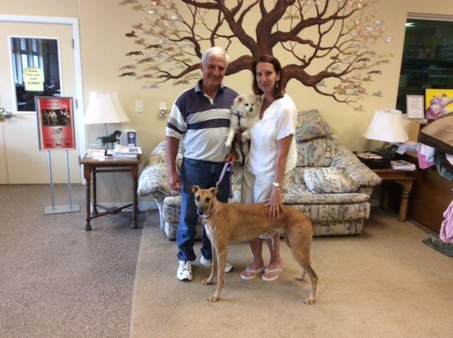Ellie with her new family John, Priscilla & Betty.  Congratulations to this new #fureverfamily! #adoptaretiredracer #gpi #greyhound #greyhoundpetsinc #greyhoundsmakegreatpets