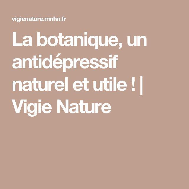La botanique, un antidépressif naturel et utile!  | Vigie Nature