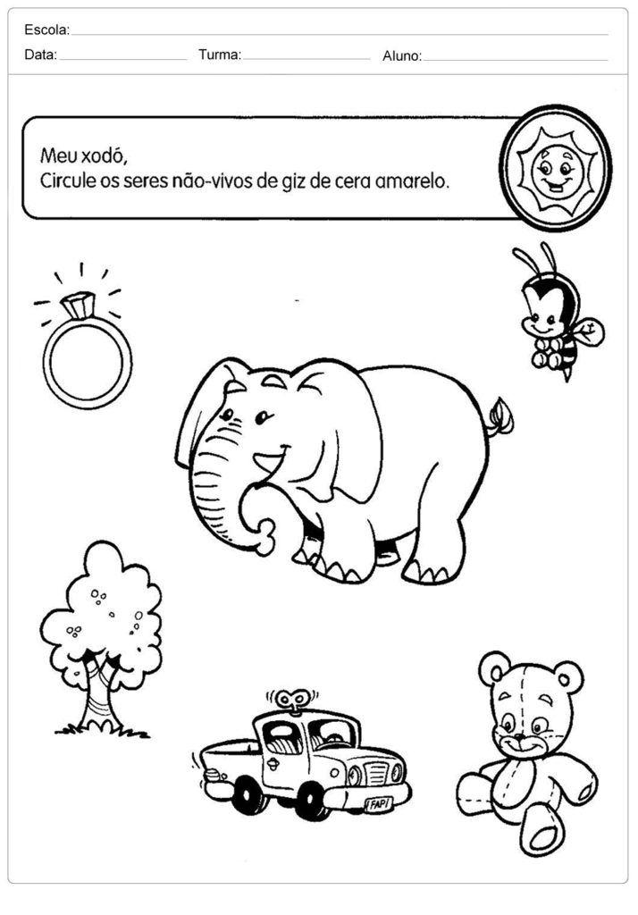 40 Atividades Sobre O Meio Ambiente Para Educacao Infantil Para