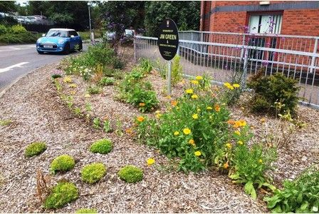 Barnstaple Town Council takes on overgrown verges from county council | North Devon Journal