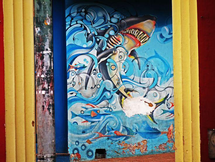 El Tiburón del Chorro