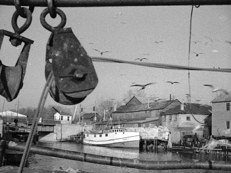 """The fish tug """"Trimac"""" at Misner's fish plant  dock next to the lift bridge to unload the catch, circa, 1965."""