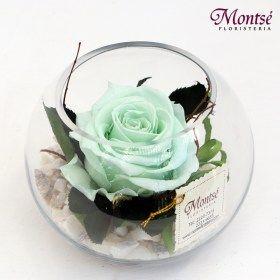 rosa-preservada-minty-green