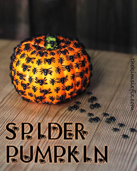 Spider pumpkin.. easy and creepy.. perfect for Halloween
