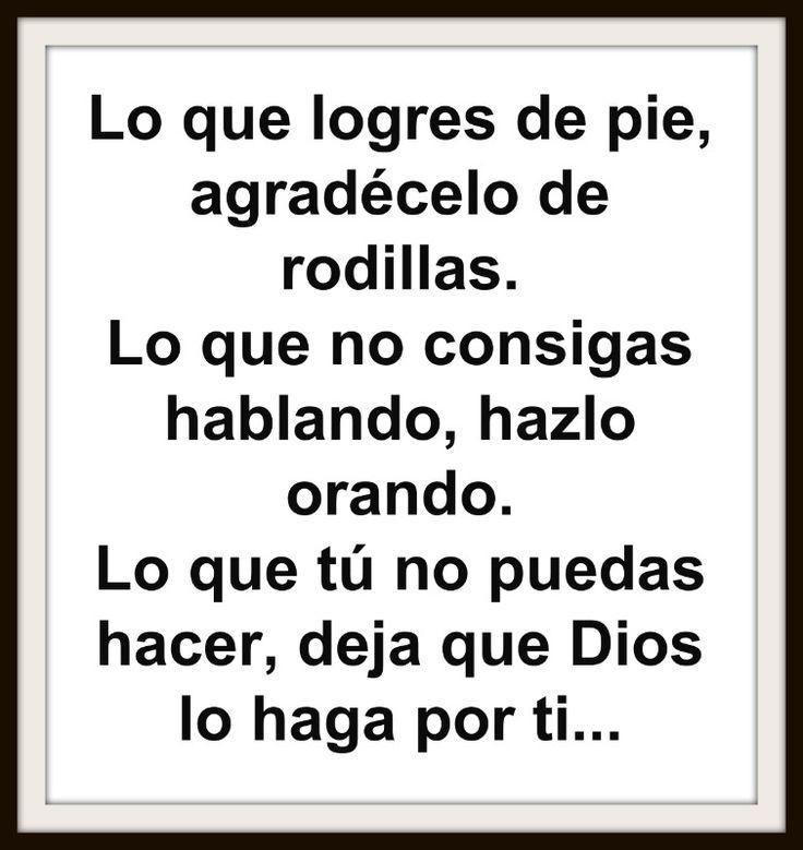 Lo que logres de pie, agradécelo de rodillas. Lo que no consigas hablando, hazlo orando. Lo que tú no puedas hacer, deja que Dios lo haga por ti...