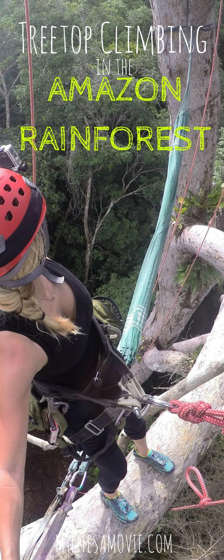Explore the amazon jungle peru trip advisors - How To Go Treetop Climbing In The Amazon Rainforest