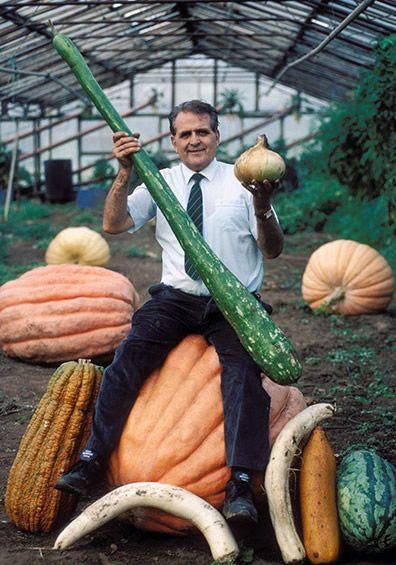 Giant vegetables!