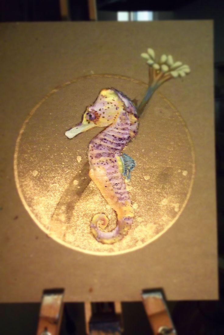 a study on the seahorse Up in 1994 by the seahorse trust to study both of the species in the hippocampus hippocampus in torbay, devon for 3 months was invaluable to gather much needed data on their ecology and behaviour in the wild john newman (the seahorse trust) studied a pair of short snouted.