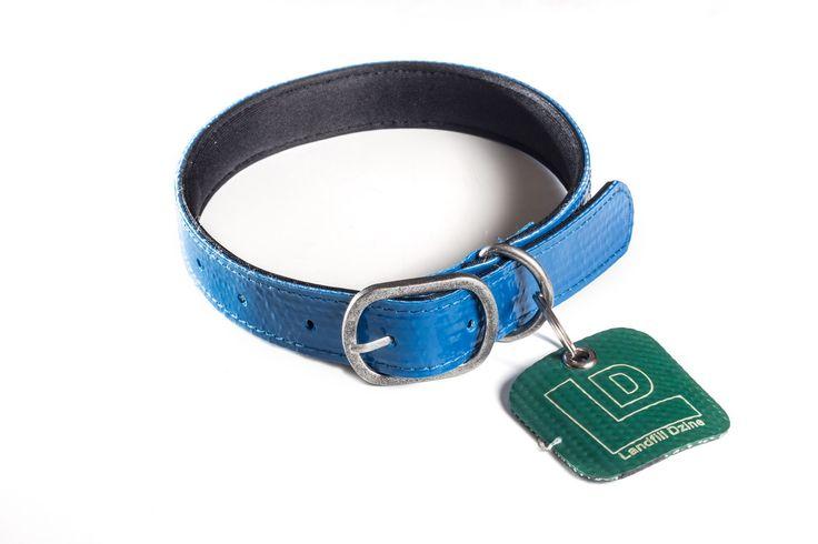 Dog collars: