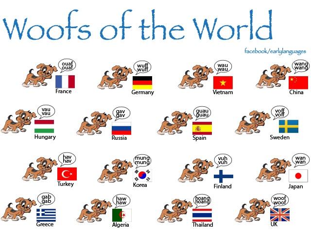 ... Dogs Bark, Woof, World, Around The World, Spanish Class, Ladridos Del
