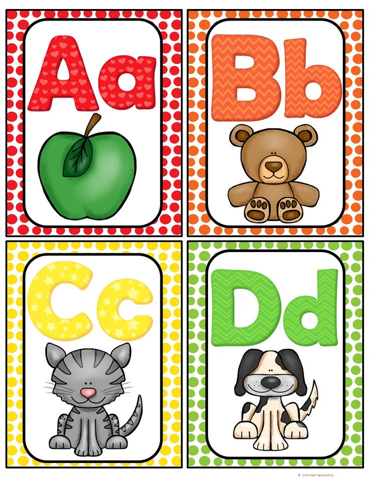 FREE!! Here is a cute set of Alphabet cards for your classroom. They can be used as flash cards or word wall headers. The pictures are inviting and your students will enjoy using them to help them with letter sound recognition. I have also included a mini alphabet chart.