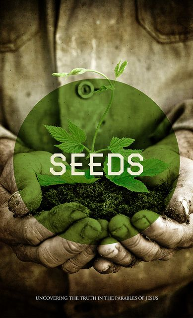 Seeds is typographical. Seeds is fresh. Seeds is green. Most importantly, Seeds is sexy. #graphicdesign #typography
