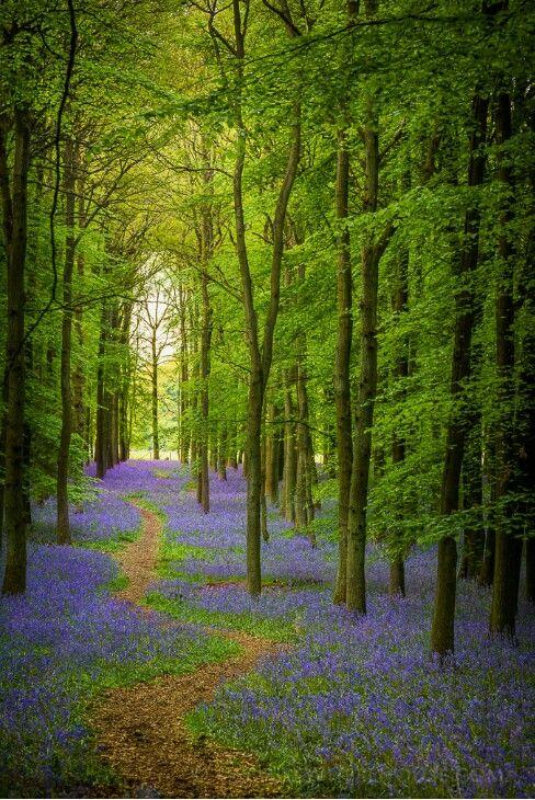 England... my dream