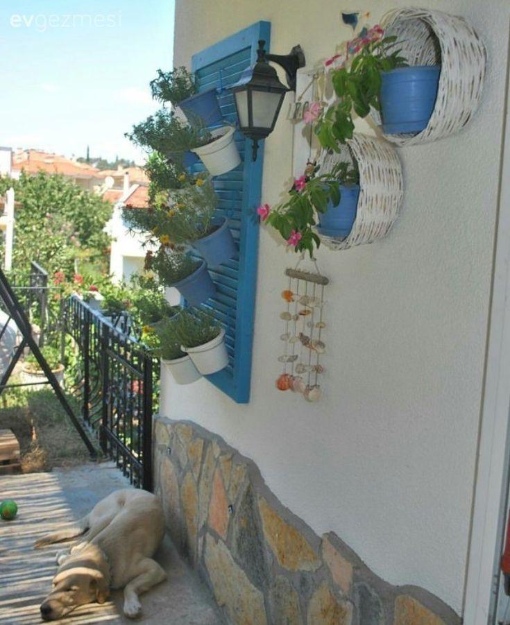 Bahçe, Duvar dekorasyon, Mavi