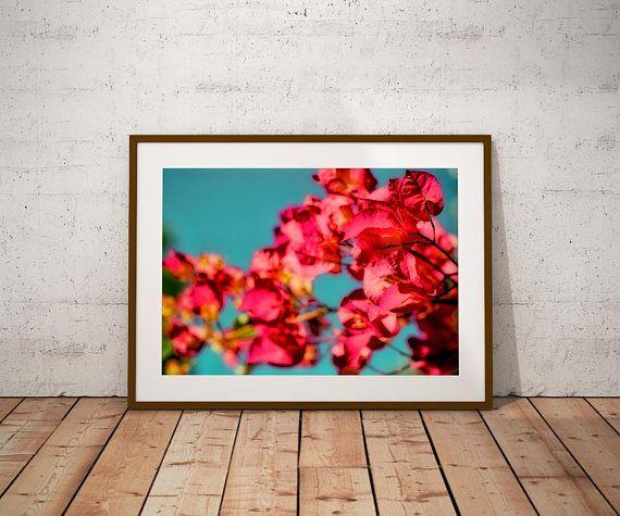#large  #wallartprints  #print  #bougainvillea  #bluesky  #pinkflowers  #flowers #mediterranean #homedecor #gifts #giftideas #giftsforher #giftsformom #giftsforwomen #summervibes #etsyfinds