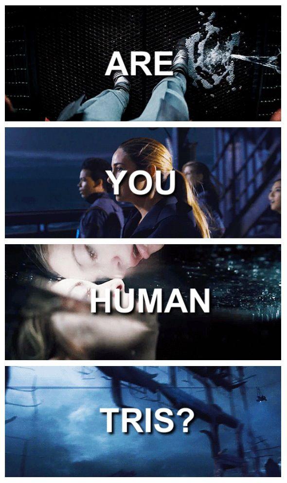 No She's Divergent