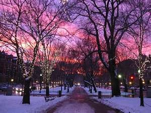 Boston, MA. home for the holidays