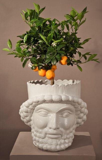 porcelain Head,  special vase