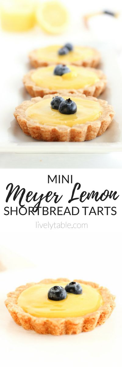 Sweet and tangy Mini Meyer Lemon Tarts with buttery shortbread crusts are easy and delicious spring and summer desserts!   via livelytable.com