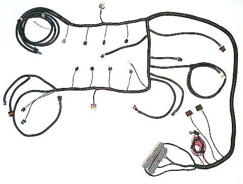 Ls1 Wiring Harness Labeled