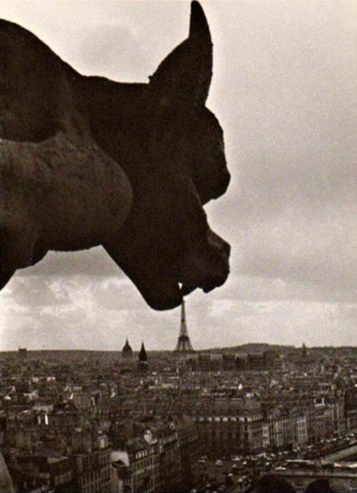 Art Gothique -  Robert Doisneau - La Gargouille de Notre Dame, photo de 1969. → Le Gothique possède un bestiaire imaginaire, un mélange de vrai et de faux