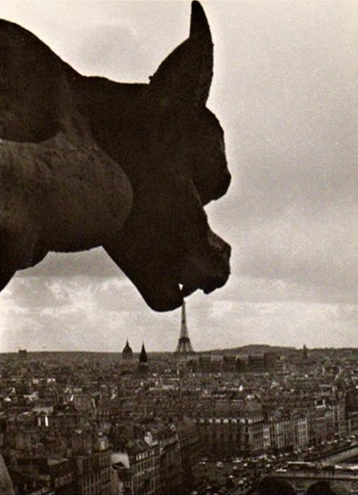 Robert Doisneau - The Gargoyle of Notre Dame, 1969.