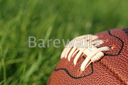 Football in the grass art print poster