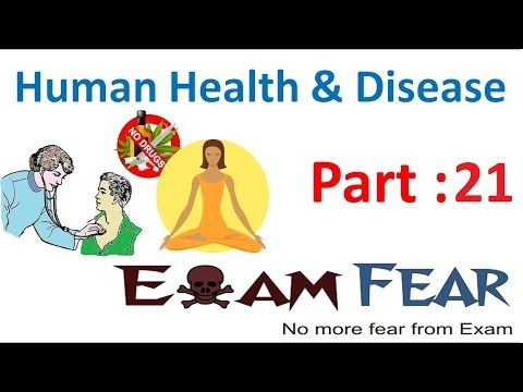 Biology Human Health & Diseases part 21 (Cancer Diagnosis & treatment) class 12 XII - WATCH THE VIDEO.    *** cancer diagnosis to treatment how long ***   Biology Human Health & Diseases part 21 (Cancer Diagnosis & treatment) class 12 XII Video credits to the YouTube channel owner
