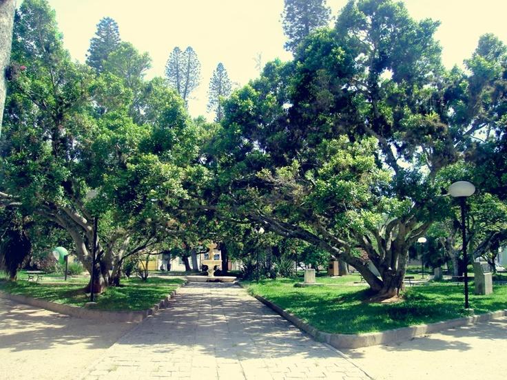 Laguna square,SC,Brazil