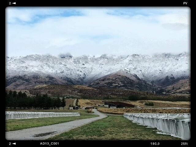 First 'interesting' day of vintage 2013 - snow! We start next week.