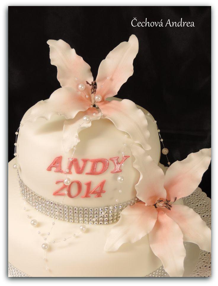 slavnostní dort...