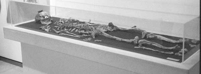 Tomb Twister: Skeleton May Be Alexander the Great's Father