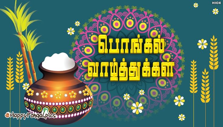Happy Pongal Wishes in Tamil Font
