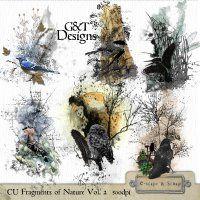 G&T_DESIGNS_CU_FRAGMENTS_OF_NATURE_VOL_2