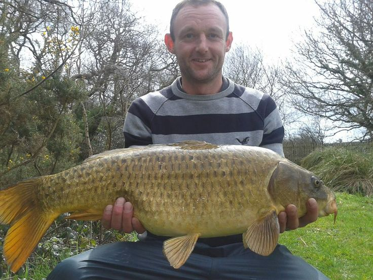 Wow, what a whopper!! 20 pound carp caught this week on lake 4 by a happy Marc Lloyd https://www.facebook.com/meadowlakesholidaypark/photos/a.189687419728.120711.189679114728/10152290933574729/?type=3&theater