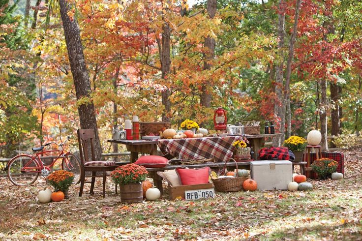 Autumn Picnic Southern Lady Magazine Fall Entertaining