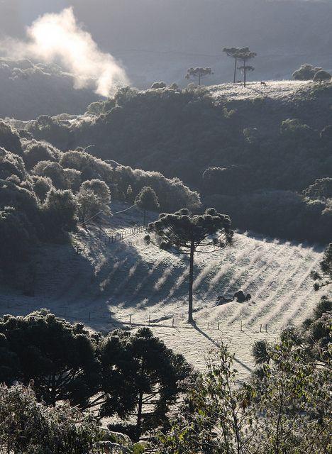 Amanhecer gelado (Frosty Morning) by Miriam Cardoso de Souza, Caxias do Sul, Brazil, via Flickr