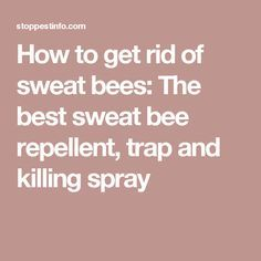 How to get rid of sweat bees: The best sweat bee repellent, trap and killing spray