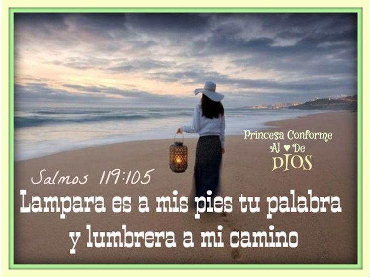 Lampara es tu palabra para mi DUIos https://www.facebook.com/PrincesaConformeAlCorazonDeDios